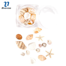 Blueness 1Box Shell&Conch Nail Art Decoration Ocean Style Charms Nail Supplies For UV Nail Gel Polish Manicure Accessories JH507(China)