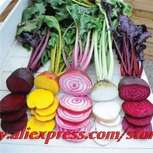 Wholesale 2015 New Arrival Beetroot Heirloom Mix 50 Seeds All Colours Vegetable Garden Nutritious Organic Easy To Grow(China)