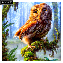 ZOOYA Diamond embroidery forest eagle 5d diy diamond painting Cross Stitch full square drill Rhinestone mosaic decoration ZX(China)