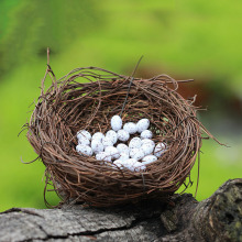 1Set/6Pcs Unique Miniature Cute Bird Eggs Nest Artificial Animal Craft Home Desktop Decoration Mini Landscape Gifts