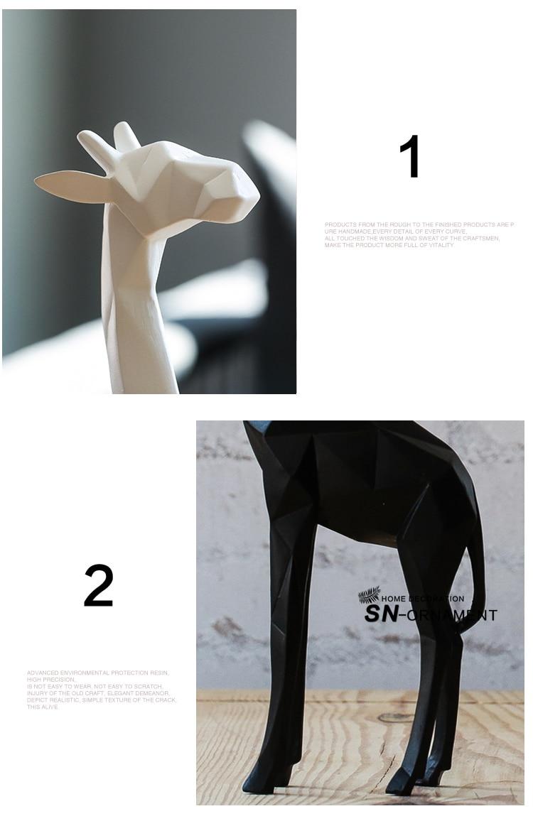 b (5)