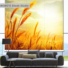 MOMO Blackout Flower Window Curtains Roller Shades Blinds 100% Thermal Insulated Fabric Custom Size, Alice 531-534