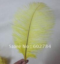 "Ostrich drab Feather 100pcs/ lot  12-14"" 30-35cm yellow ostrich plumage Free Shipg"
