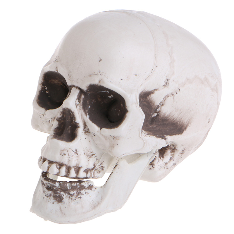 plastic human mini skull decor prop skeleton head halloween coffee bars ornament toyschina - Halloween Skeleton Head