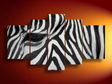 Free shipping! New modern Wall art decorative Zebra Animal handpainted oil painting canvas 5 Panels