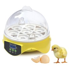 Mini 7 Egg Incubator Poultry Incubator Brooder Digital Temperature Hatchery Machine Hatcher for Chicken Duck Bird Pigeon(China)