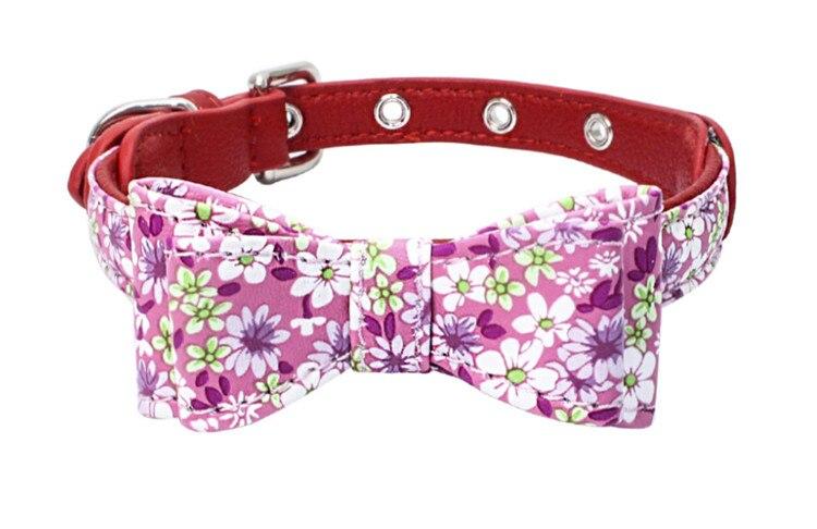 dog collar (9)