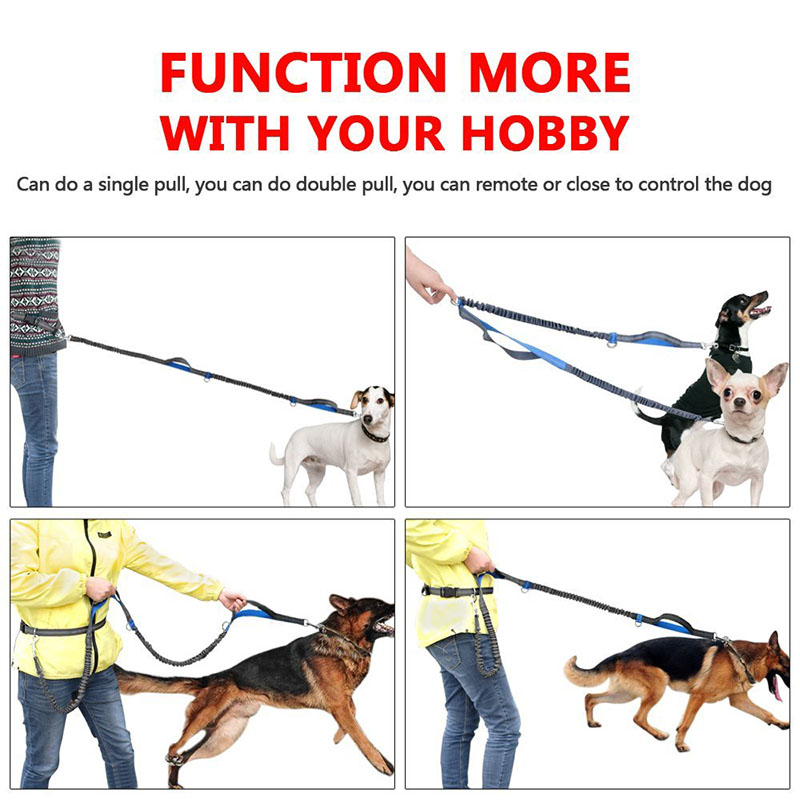 Hands Free Dog Leash Image