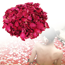 100g/Bag Red Rose Petals Nutritious Dried Flower Petal Spa Shower Skin Care Bath Tools T35(China)
