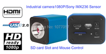 Factory Direct sale ,Professional 1080P 60fps HDMI microscope camera support windows XP/Vista/W7/W8/MAC(China)