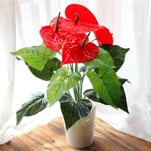 Artificial Potted Anthurium Plastic Flower Simulation Tree Sitting Room Space Decoration Home Floo Decor Cheap Bonsai Flower