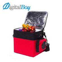 Portable 6L Car Mini Fridge Multi-Function Cooler Freezer Warmer Refrigerator 12V for Travel Camping Anti-Rotten 5 to 65 Degree