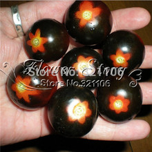 25 RED BUMBLE BEE TOMATO SEEDS! VERY RARE!Good tasty!Vegetable Seed