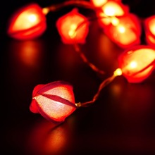 Finether Red/Yellow/White 3.9 ft Battery Powered 10 LED Flower String Lights Tulip Bud Shape of Luces Decorativas