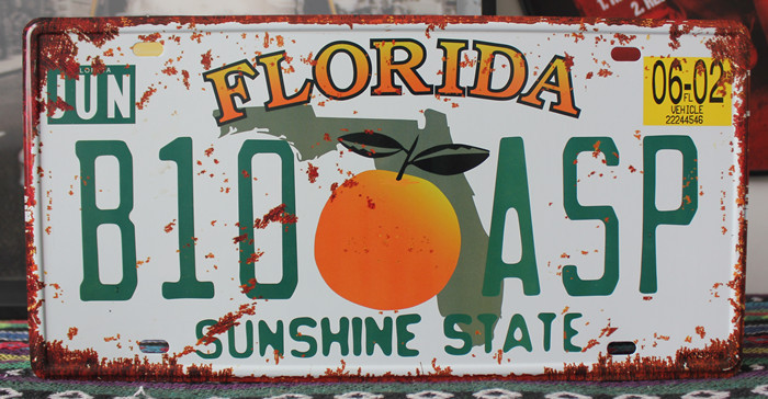 "RONE0228 Car License Plates number "" Florida B10-ASP "" vintage Vintage Metal tin signs Wall art craft painting 15x30cm(China)"