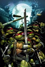 J#82 Top Teenage Mutant Ninja Turtles Comic  Poster Wall Sticker for Home Decorative And Custom Print your image F82