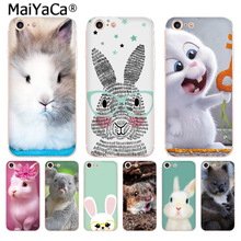 Buy MaiYaCa cute animals Mr Koala Easter Bunny Rabbit Amazing phone case iPhone 8 7 6 6S Plus X 10 5 5S SE 5C 4 4S Coque Shell for $1.23 in AliExpress store