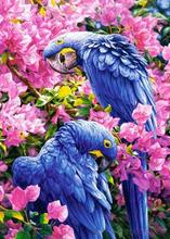 Diamond embroidered flowers with two parrots, cross stitch, 2017 DIY 5D full diamond paintings, home decorations(China)