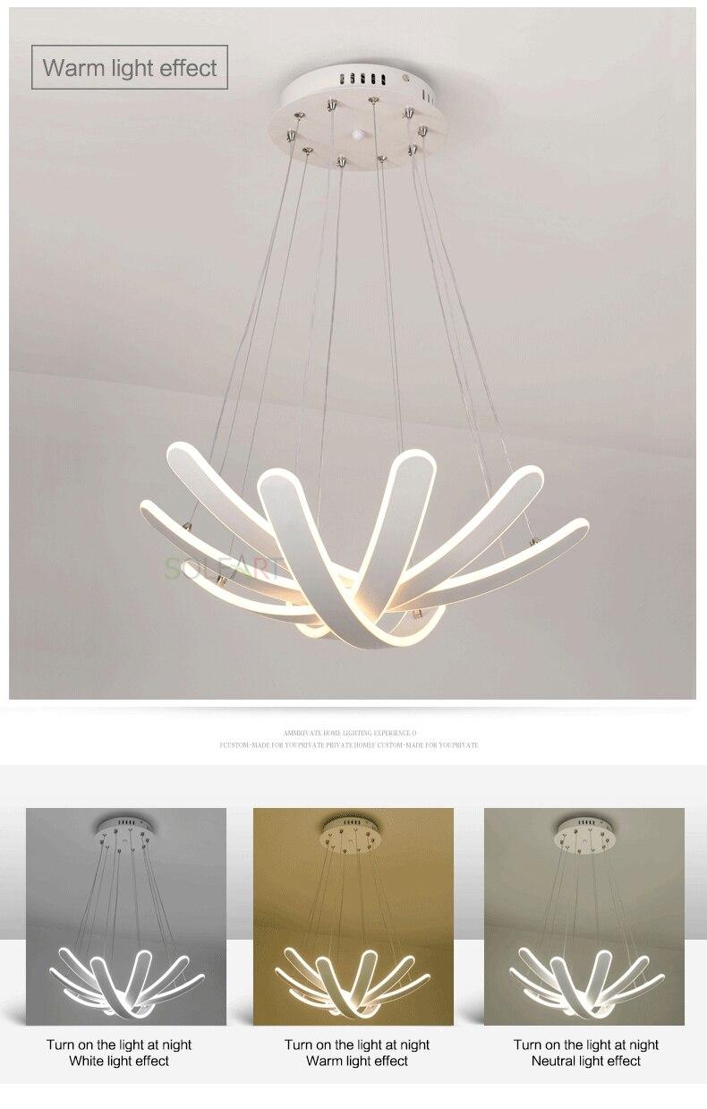 touw-lamp-chandelier-Modern-ceiling-pendant-lamps-pendant-lights-_11