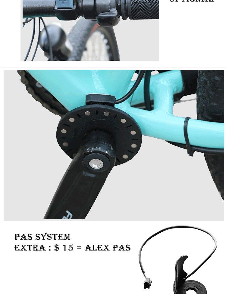 electric bike kit (6)