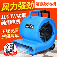 Blow dryer, Arcades Hotel, blower, carpet blower, ground power blower, dryer(China)