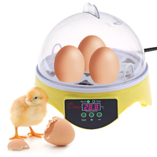 EU/US Mini 7 Egg Incubator Poultry Incubator Brooder Digital Temperature Hatchery Egg Incubator Hatcher Chicken Duck Bird Pigeon(China)