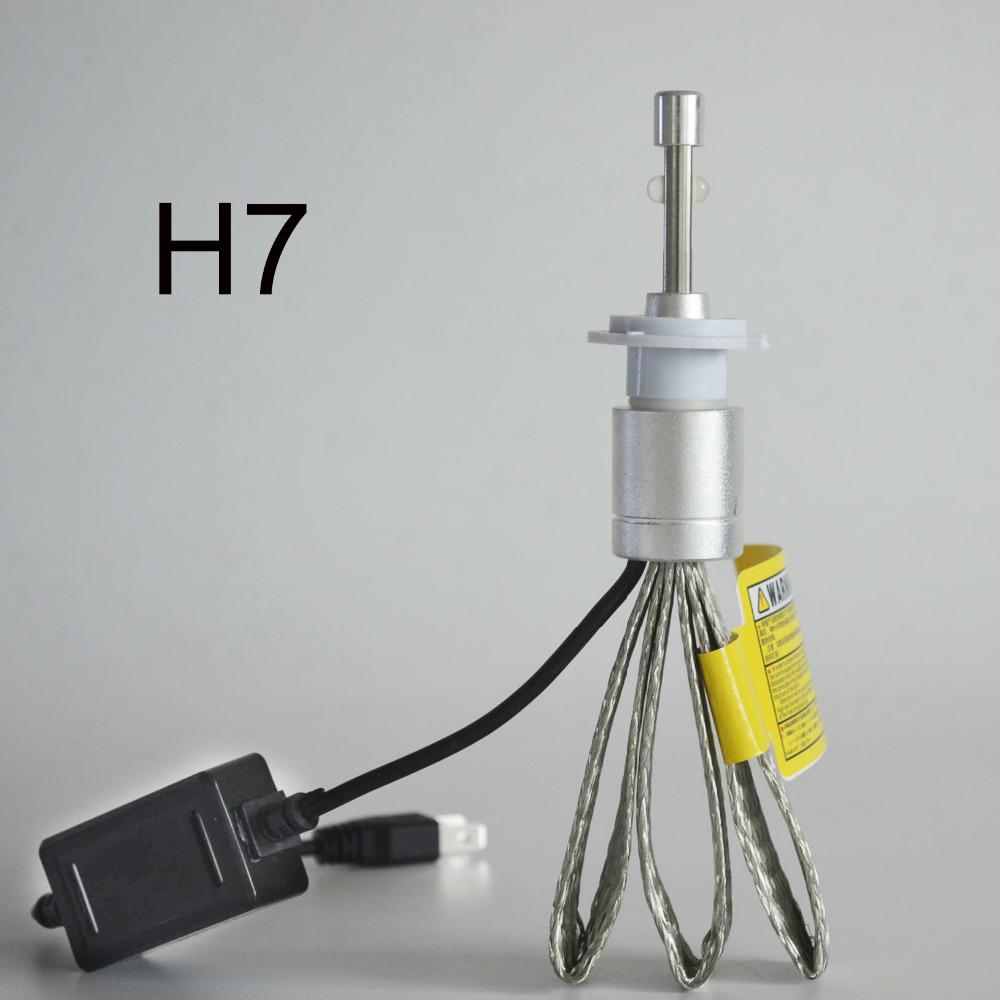 H7 (1)