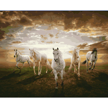 HAOCHU Wild Horses Oil Painting Digital Coloring By Numbers Acrylic Picture Wall Poster for Home Decor Quadros De Parede Sala