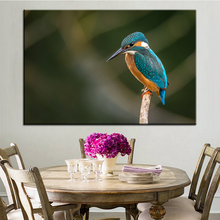 Large size Printing Oil Painting Blue long mouth bird Wall painting POP Art Wall Art Picture For Living Room painting No Frame