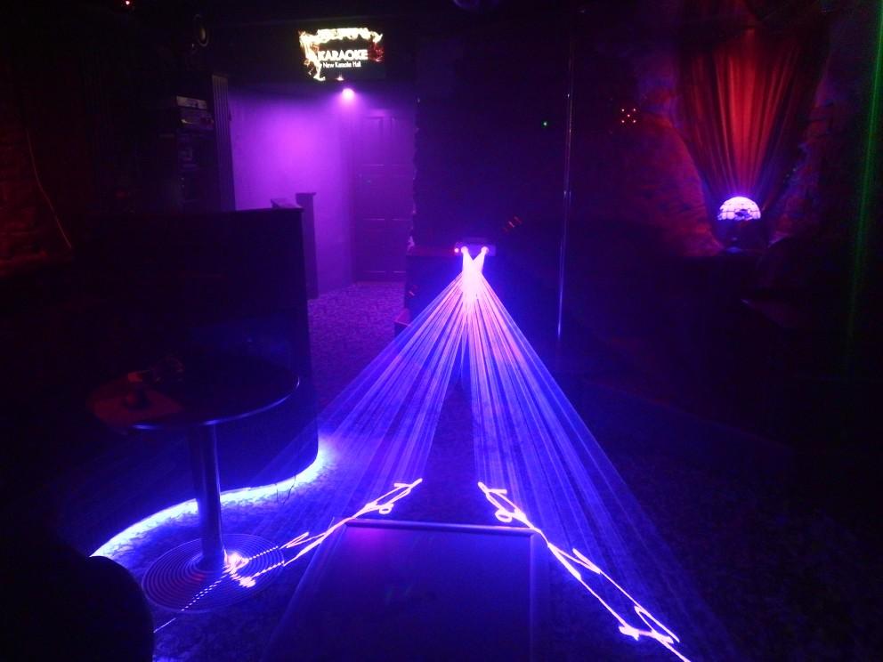 300mW 2 lens Blue 450nm-455nm Beam Laser Stage Light DMX Club Show DJ Bar Party Lighting Laser Lighting DMX DJ Show (7)