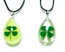 FREE SHIPPING 12 PCS Four Leaf Clover Charm Glow Lucid Drop Pendant Real Green Shamrock Item(China)