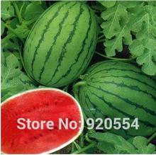 200pcs/original pack Early spring ruby watermelon Seeds bonsai plant Home & Garden DIY Plants Free Shipping