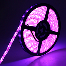 Tanbaby Pink color led strip SMD 3528 flexible waterproof rope bar light 5M/roll DC12V 60led/M decoration lighting(China)
