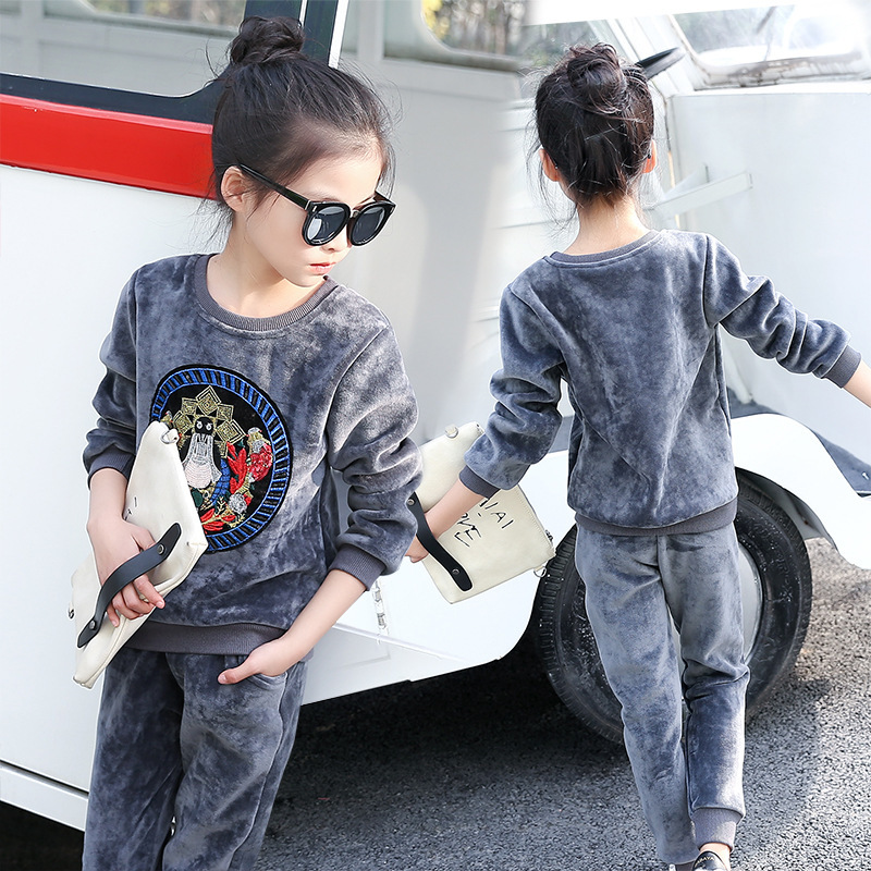 Autumn Girl Fashion Concise Thickening Girl Two-sided Down Embroidery Suit Long Sleeve Trousers 2 Pieces Kids Clothing Sets<br>
