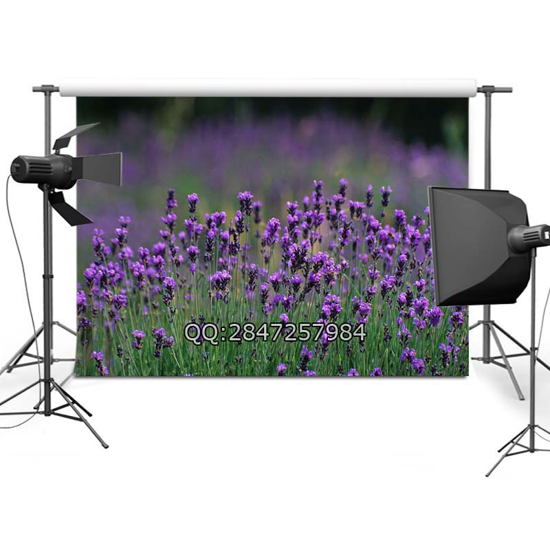 spring Backdrop Vinyl Custom Photography Backdrops Prop Photography Background  F-2380<br><br>Aliexpress