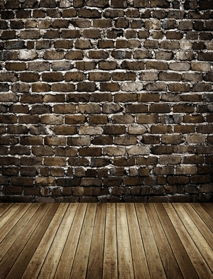 6.5x10ft Brick wall studio photography background vinyl computer print for portrait photographic backdrops for sale C-1691<br>