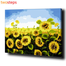 TwoSteps DIY Digital Canvas Oil Painting By Numbers Pictures Coloring By Numbers Acrylic Paint By Number Kits Sunflower Blue Sky