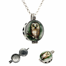 1pc Vintage Silver Creative Owl Design Essential Oil Fragrance Aroma Diffuser Trendy Cameo Locket Pendant Necklace Jewelry Gifts