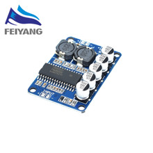 1pcs SAMIORE ROBOT Low Power TDA8932 35W Digital Amplifier Board Module Mono Power(China)