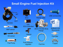 For turbo 125cc-200cc motorcycle Motorbike ATV scooter buggy EFI small engine Electronic Fuel Injection kit GY6 Lifan zongshen(China)