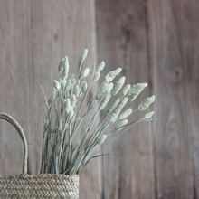 50 Pieces A Bunch Beauty Grass Natural Dried Plant Long Decorative Dried Grass 60 CM Two Colors Flower Arrangement Material