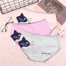 Buy Cats Panties New Sexy Calcinha Female Casual Cute Girl Tanga Cotton Underwear printed Women Briefs