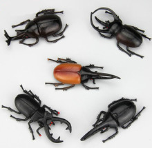 2pcs 5.5cm simulation beetle Toys Special Lifelike Model Simulation insect Toy nursery teaching aids joke toys GYH