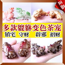 Heterochrosis pet pi xiu tea pet kung fu tea zero accessories pet tea play(China)