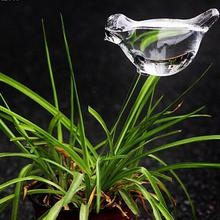 Bird Shape Design Hand Blown Clear Glass cute Watering Aqua Globes Small Plant Watering Bulbs mini Self A4