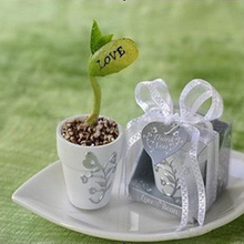 Novelty cute Planting Potted magical love bean DIY grow Crop Bonsai Wedding supplies Event party favor gifts