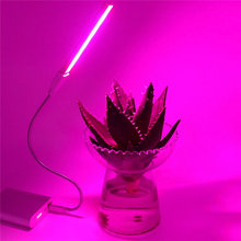 Portable USB LED Plant Grow Light Lamp 2.5W 10 Red 4 Blue Growth Lights for Home Office Garden Greenhouse Desktop Plant DC5V