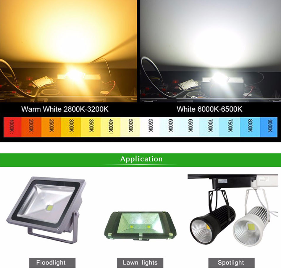 100% Epistar LEDs Full Watt 10W 20W 30W 50W 100W COB LED Light Chip for Project Flood Light Floodlights AC LED Bulb with Driver (8)