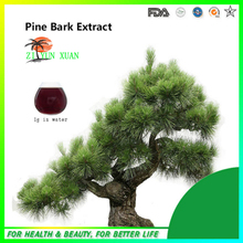 Wholesale GMP factory supply hgh quality french pine bark extract 1KG/lot