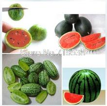 Mini thumbs small balcony pot planting watermelon seeds red-yellow-green mix 10 seeds/Pack(China)